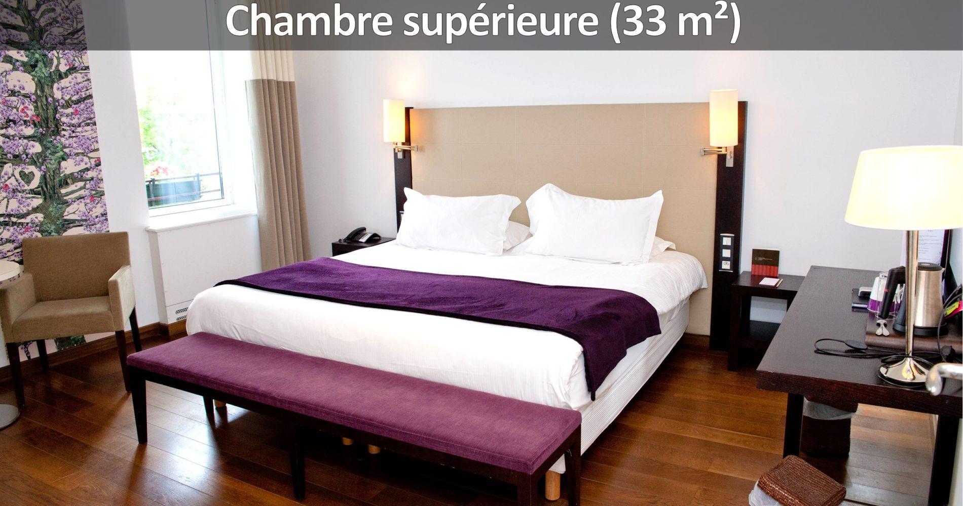 voyage affaire hotel Rodez